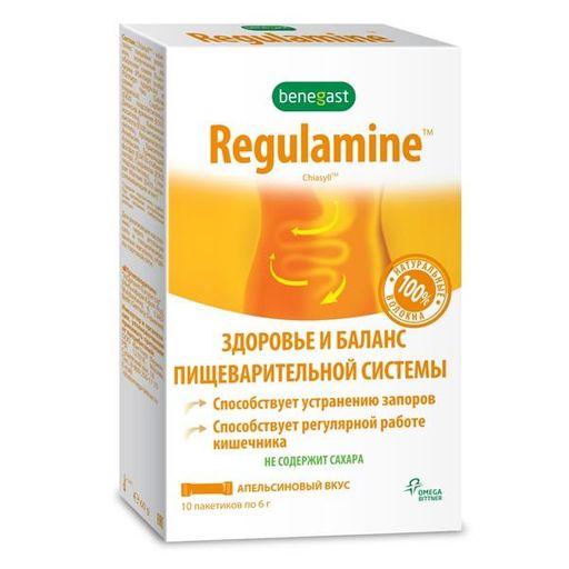 Бенегаст Регуламин, порошок, с апельсиновым вкусом, 6 г, 10шт.