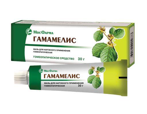 Гамамелис, мазь для наружного применения гомеопатическая, 30 г, 1шт.